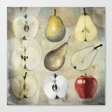 Fruit collage Canvas Print