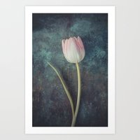 tulip Art Prints featuring Tulip by Maria Heyens