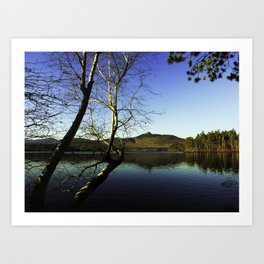 Chocorua Lake Art Print
