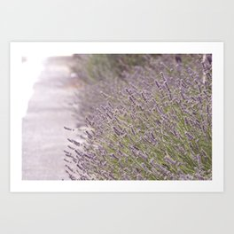 Lavender Town Art Print