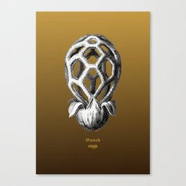iFunch brown Canvas Print