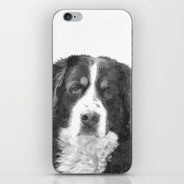 Black and White Bernese Mountain Dog iPhone Skin