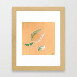 Wine Fairies 4 - Viognier Framed Art Print