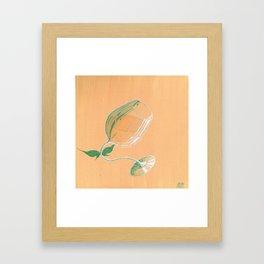 Wine Fairies 4 - Viognier Framed Art Print