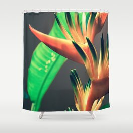 Costa Rican Beauty Shower Curtain