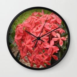 Peach Ixora Plant Flowers Wall Clock