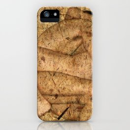 Kuma Sutra iPhone Case