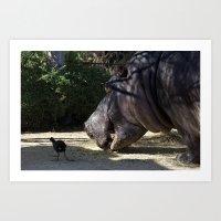 vegetarian Art Prints featuring Hippo Vegetarian by GPNaturePhotos
