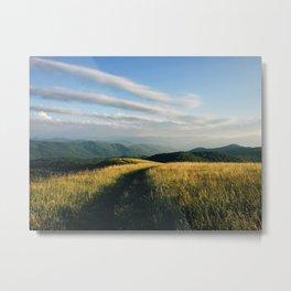 Trail through the mountains Metal Print