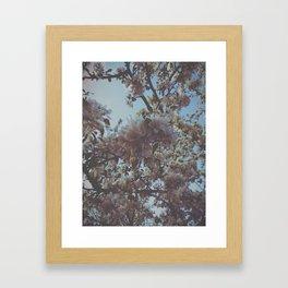 VSCO - Floral - Flowers  Framed Art Print