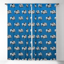 American Supercar Cartoon Blackout Curtain
