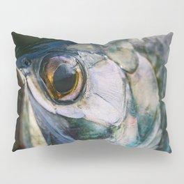 Tarpon Eye Pillow Sham