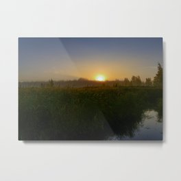 magical sunny eye in the sky over a grassy swamp Metal Print