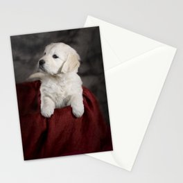 Labrador puppy Stationery Cards