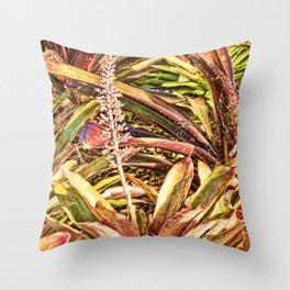 Beautiful Bromeliad Throw Pillow