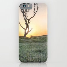 Barrier Island Sunrise II iPhone 6s Slim Case
