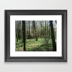All That Will Remain of Us Framed Art Print