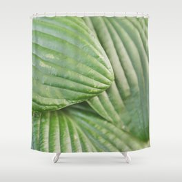 Hosta Leaves Shower Curtain