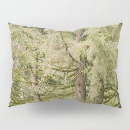 Oregon Trees Pillow Sham