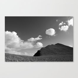 Land Wave Canvas Print