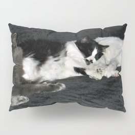 3 cats lounging Pillow Sham