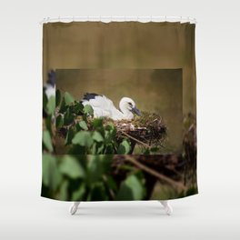 Ciconia ciconia child sitting Shower Curtain