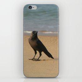 Crow on the Sand Varkalala iPhone Skin