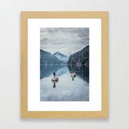 Couple of swans, romantic scene in bavarian alps Framed Art Print