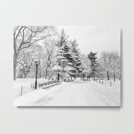New York City Winter Trees in Snow Metal Print