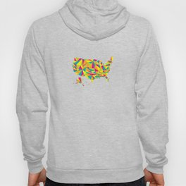 Abstract America Bright Earth Hoody