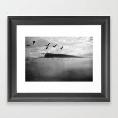Pelícano Framed Art Print