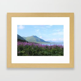 Kodiak Pristine Framed Art Print