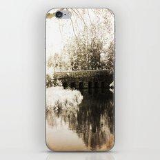 Stone Bridge iPhone & iPod Skin