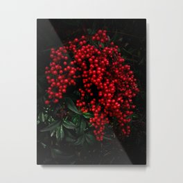 Heavenly Bamboo Metal Print