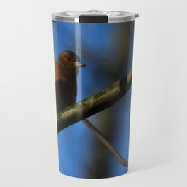 Chaffinch Donegal Ireland 22 Travel Mug