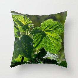 Leaves in the Sun Throw Pillow