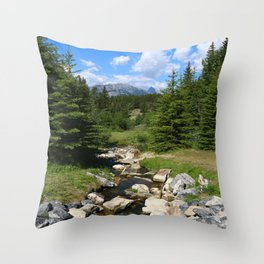 Mountain Brook In Th Rockies Throw Pillow