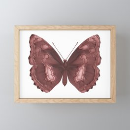 Brown tropical butterfly Framed Mini Art Print
