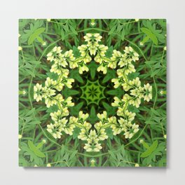 Cream and green botanical mandala - Baptisia flowers 1 Metal Print