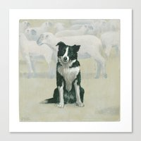 border collie Canvas Prints featuring border collie by phil art guy