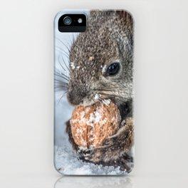Magic Nutcracker iPhone Case