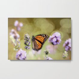 A Monarch and her Lavender Metal Print