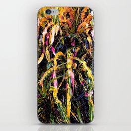 SanFrancisco/ Croton iPhone Skin