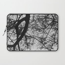 Bare Tree Branches First Flowers Laptop Sleeve