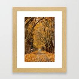 Fall Tunnel Framed Art Print