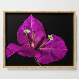 Elegant Purple Bougainvillea Serving Tray