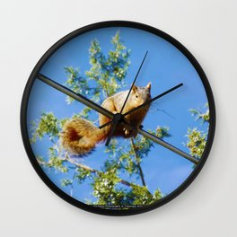 Jeronimo Rubio Photography   Peanut the Squirrel (2) High Wire Dance Wall Clock