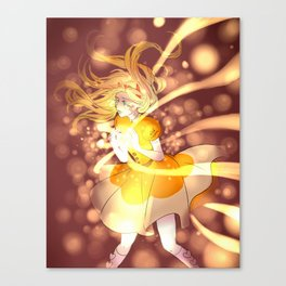 Star Butterfly Canvas Print