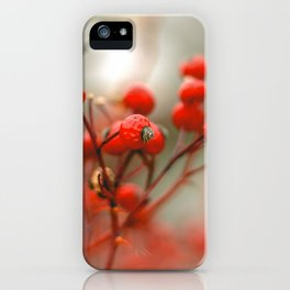 New York Nature II iPhone Case