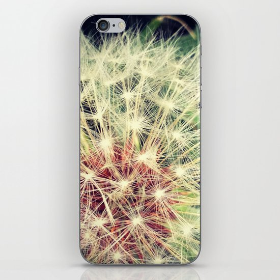 Back Yard Fun iPhone & iPod Skin